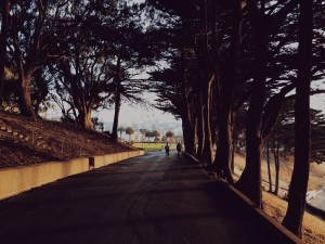 9 Important Benefits of Taking a Daily Walk