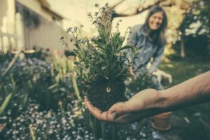 gardening for stress relief