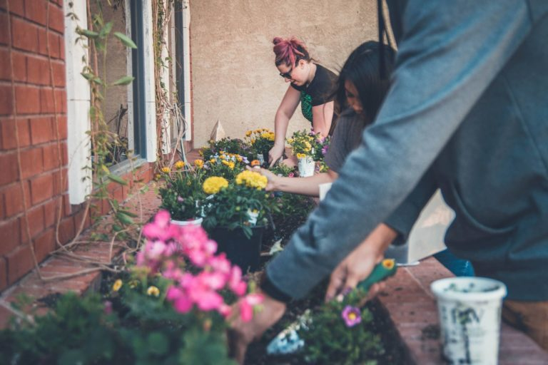 Need an Effective Stress Relief Work Out? Start Gardening for Exercise!