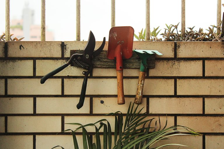 Cool Gardening Gadgets to Start a Food Garden